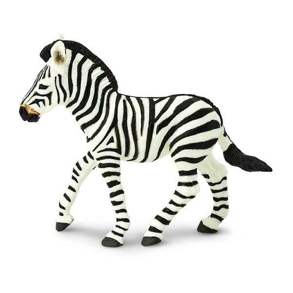 Stripy zebra