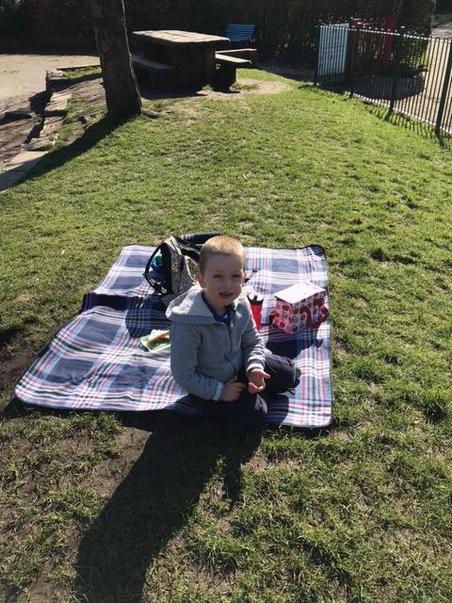 Bobby enjoying a picnic in the sun