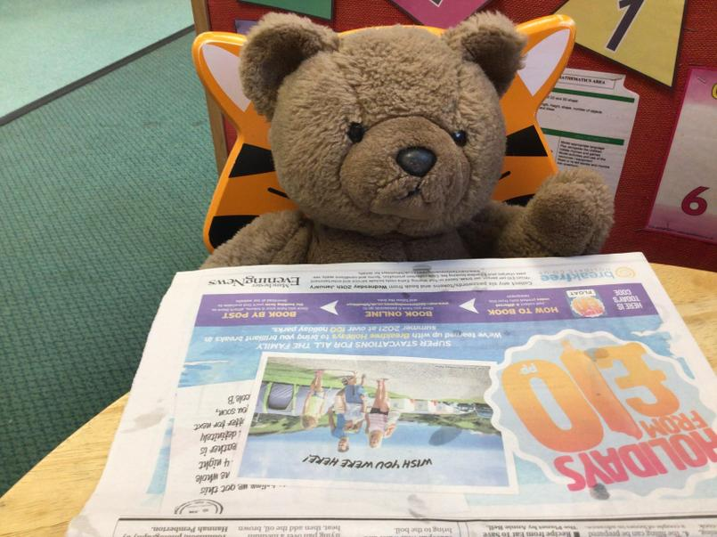 Newspaper - teddy is reading