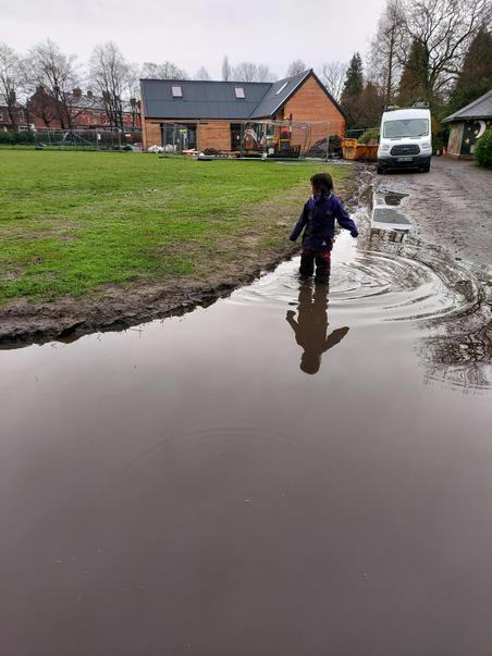 Charlie puddle paddling