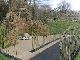 Living Willow Installation.