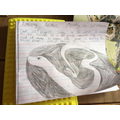 Dylan's research on anacondas!