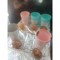 Freya's egg experiment
