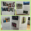 Connie's been working hard on her habitats leaflet