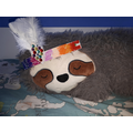 Jimmy's superb 3D headdress on a Brazilian Sloth!