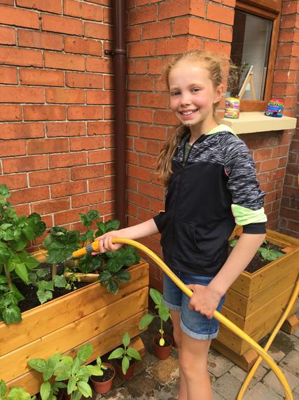 Chloe watering their strawberry plants.