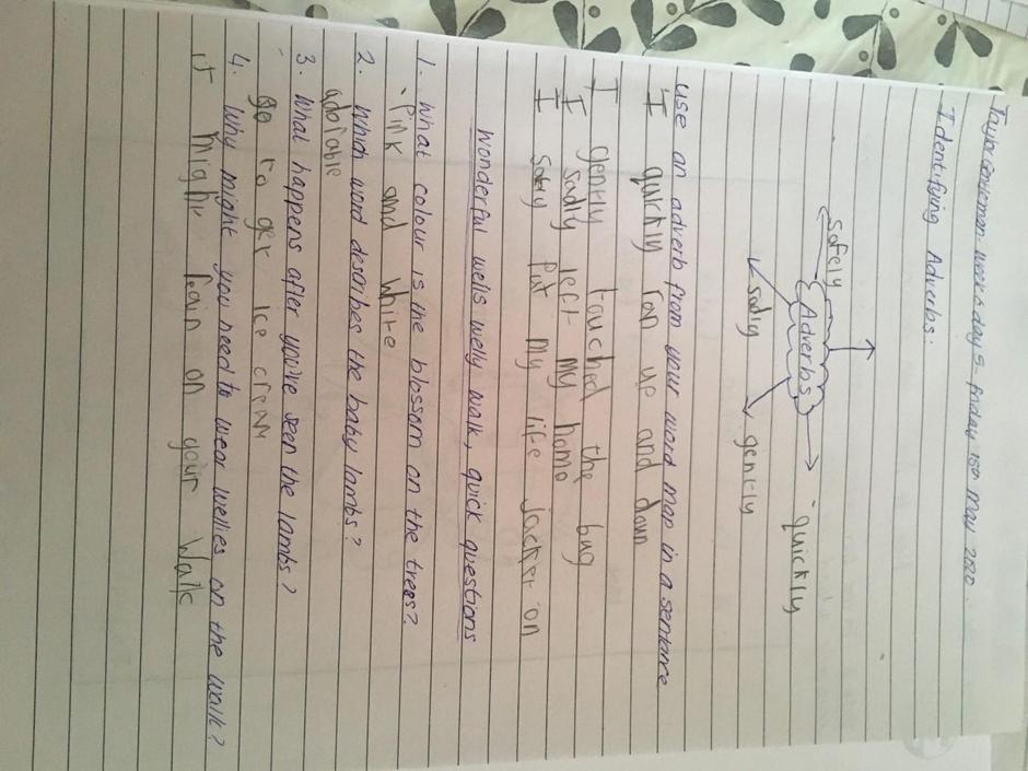 English learning by Taylor Gentlemen Orange Class