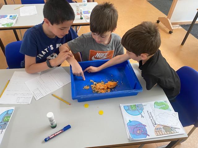 Ethan, Edan and Robert investigating seeds.