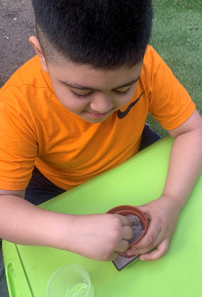 Yaseen has been busy planting his seeds. Exciting!