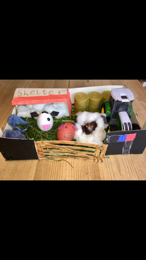 An eggscellent farm by Macey C.