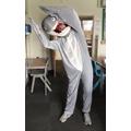Mr Leonard - his best shark pose!