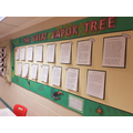 Year 4 - The Great Kapok Tree Display 2017-18