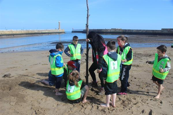 Whitby Residential 2015