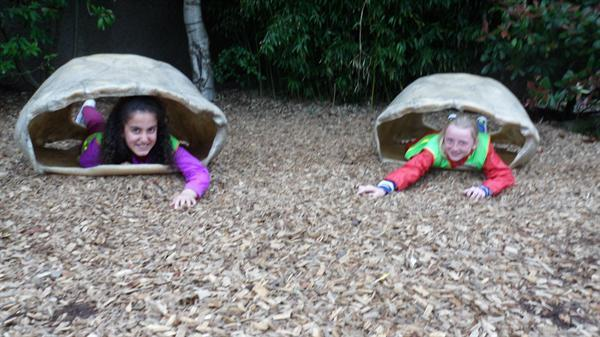 Chester Zoo Trip