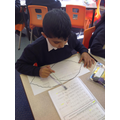 Creating our shape poems