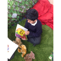Husbaan reading to the reading bears