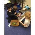 Researching animals and their habitats