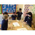 Investigating with our sense of sight