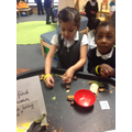 Investigating autumn objects �