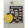 Year 3 - Spellings display