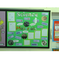 Our science topic this term is materials.