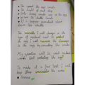 Year 5 - investigation p2