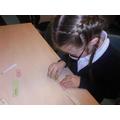 Creating sentences.