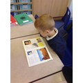 Using the classroom library to research