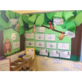 Year 3 - Spring book area