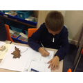 Exploring Autumn leaves for our poetry topic