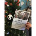 Our christmas present. Our own Panda adoption.