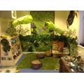 Reception - Jungle Reading area