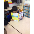 enjoying reading books linked to our science topic