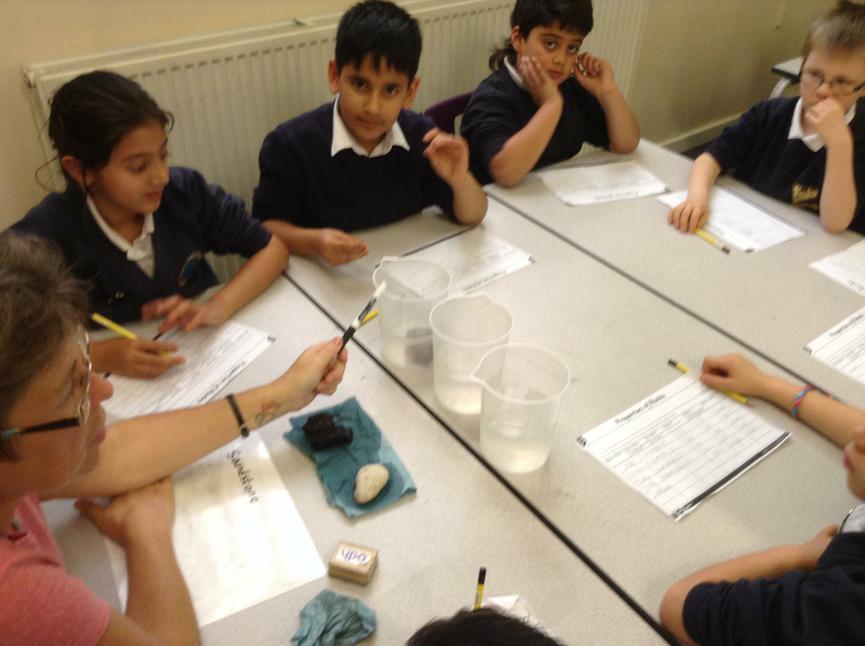 Investigating whether rocks float or sink