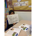 Learning to use P.E.E in guided reading