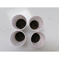 3. I filled up the cups halfway with soil.