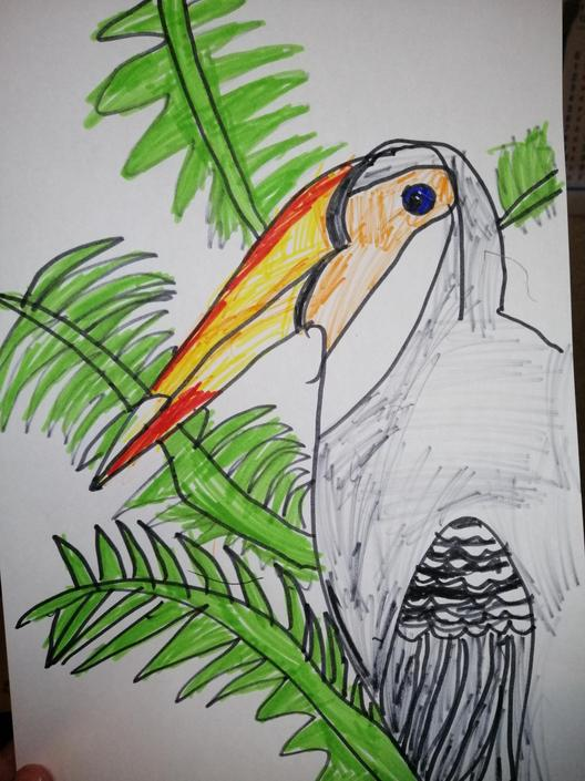 Another terrific toucan!