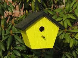 A bird box