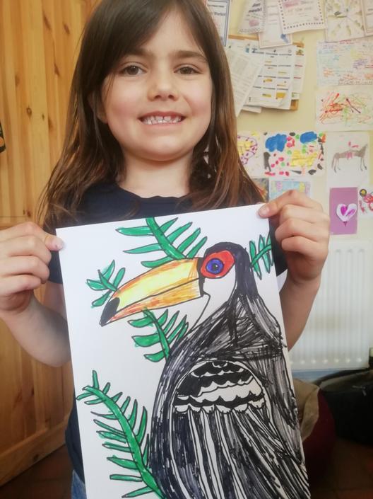 A Terrific Toucan