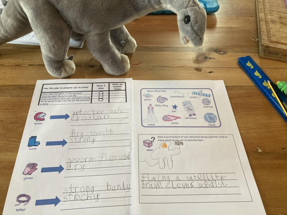 Great detailed plan. Lovely help from the dinosaur too