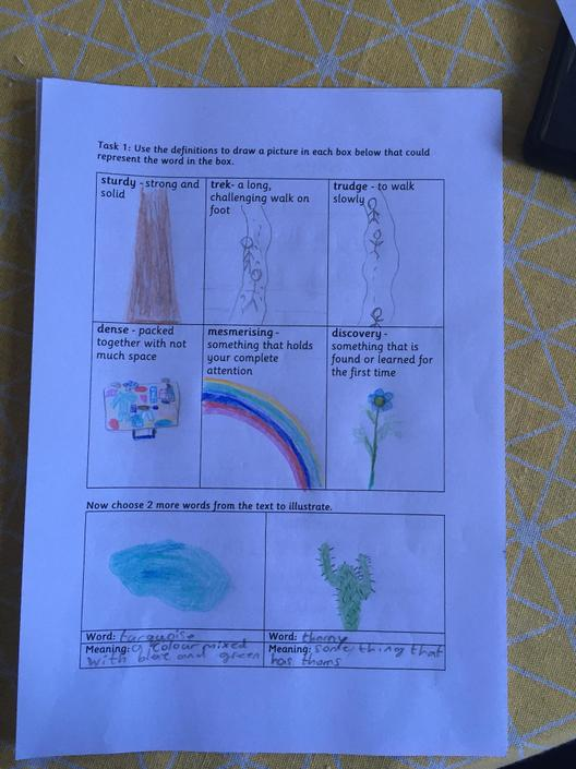 Very detailed and accurate images to match the words.