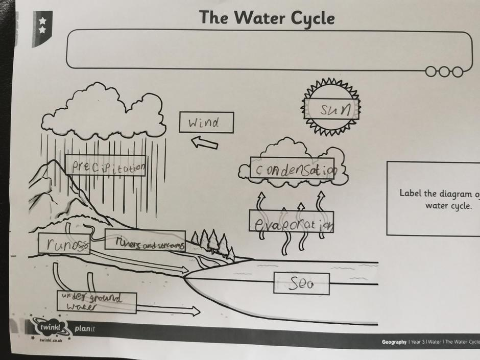 Good understanding of the water cycle!