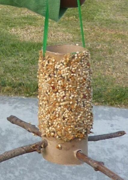 Toilet roll bird feeder with sticks