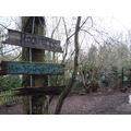 Sign posts in our woodland area