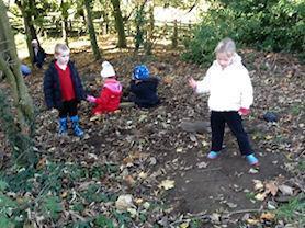 Woodland activities.