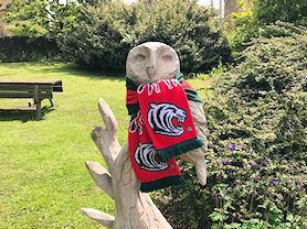 The Waltham owl showing his support!