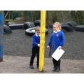 Taller or shorter?