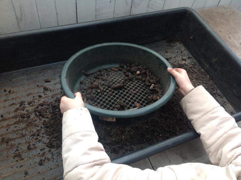 We sieved soil.