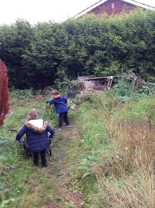 Taking weeds to the compost