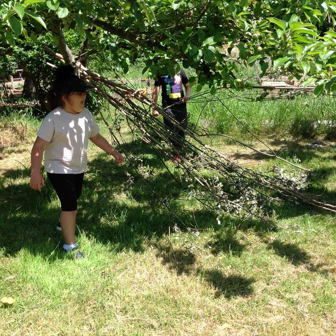 We collected some big branches.